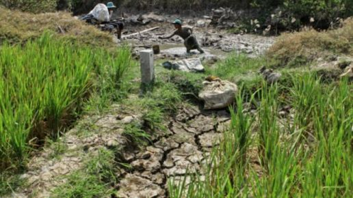 160315211642_vietnam_drought_640x360_afp_nocredit